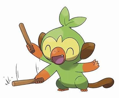 Grookey Sword Shield Pokemon Official Head Marriland