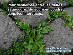 Désherbant Naturel Pour 600m2 : l 39 astuce naturelle pour d sherber entre les dalles du ~ Nature-et-papiers.com Idées de Décoration