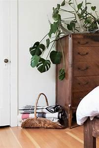 Plante D Intérieur : la d coration d 39 int rieur avec de grandes plantes d 39 int rieur ~ Dode.kayakingforconservation.com Idées de Décoration