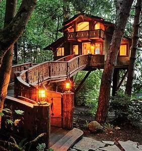 Unique, And, Creative, Tree, Houses