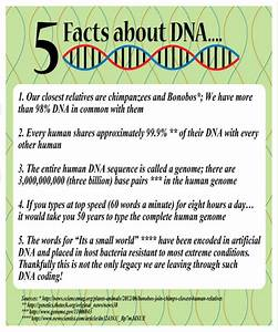 Fun Friday - Five Fantastic Facts about DNA and how to ...