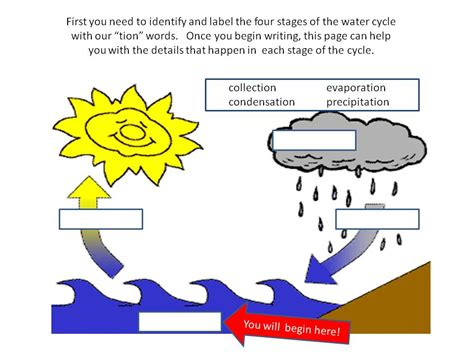 The Water Cycle Diagram Pdf by Essay About Water Cycle Myteacherpages X Fc2