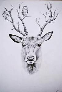 deer drawing   Tumblr