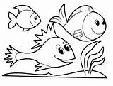 Rainbow Trout Coloring Pages Remarkable Fish Printable Getcolorings sketch template