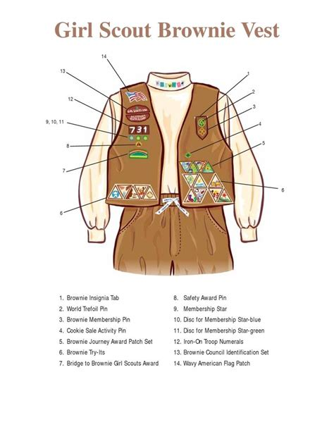 2017 Girl Scout Brownie Sash Badge Placement