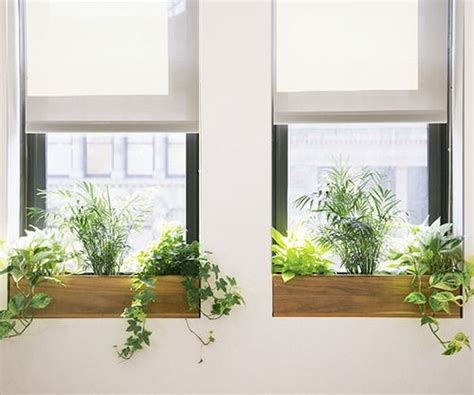 Window Sill Plant Holder by 25 Best Ideas About Indoor Window Boxes On
