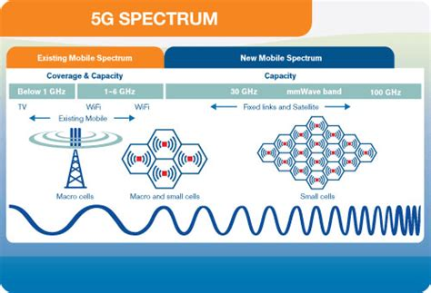 spectrum   sold  fair price nunzio mirtillo