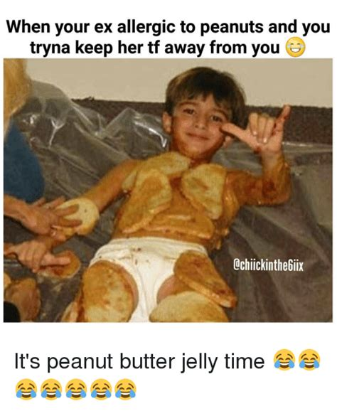 You Jelly Meme - funny jelly memes of 2017 on sizzle patti