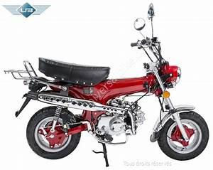 Moto Honda 50cc : moto 50cc neuve pas cher racers le mag ~ Melissatoandfro.com Idées de Décoration