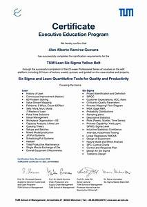 Tum Lean Six Sigma Yellow Belt By Alan Alberto Ram U00edrez