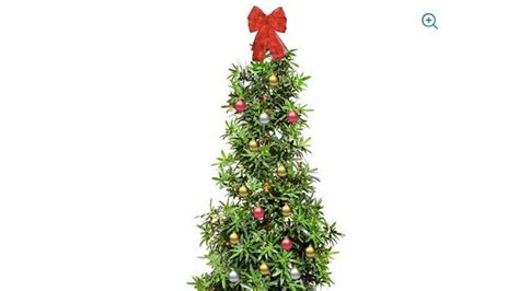 marijuana christmas tree walmart  selling