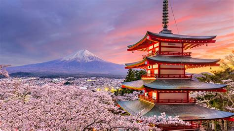 Tripadvisor has 7,072,810 reviews of japan hotels, attractions, and restaurants making it your best japan resource. Tokyo Travel - Where to Eat in Tokyo, Where to Stay in ...