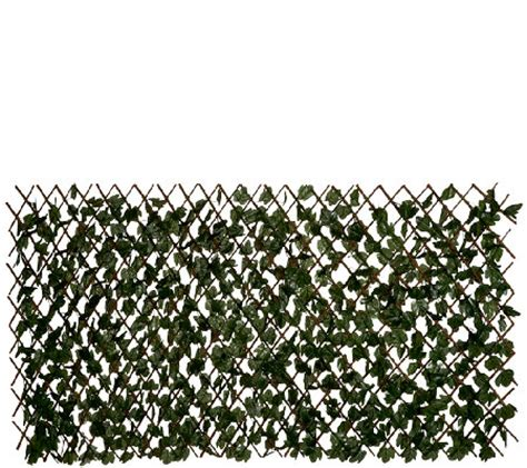 compass home expandable faux ivy privacy fence with lights compass home expandable faux ivy privacy fence qvc com