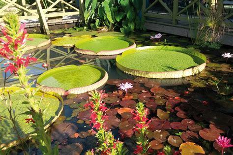 p 233 rigord les jardins d eau parks and gardens dordogne