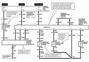 1996 Grand Marquis Eatc Wiring Diagram