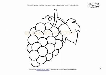 Purple Coloring 1041 48kb 736px