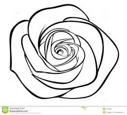 Black and White Rose Outline