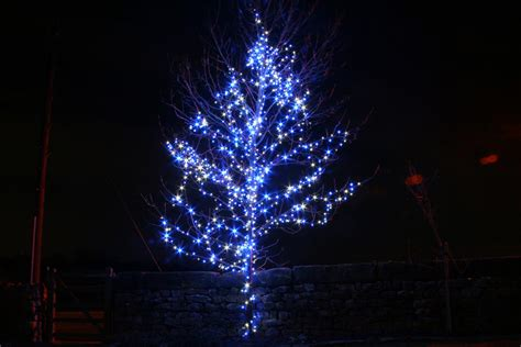 white christmas tree with blue lights blue and white christmas lights homesfeed