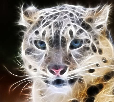 Cool Animal Wallpaper Light Wolf - animals fractal all about photo