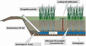 Scheme Of Vertical Flow Constructed Wetlands For The
