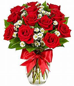 Luxury One Dozen Red Roses at From You Flowers