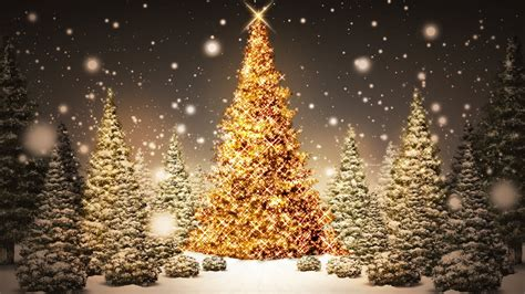 merry christmas snow tree wallpapers happy new year