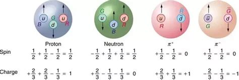 Proton Magnetic Moment by Does The Spin Motion Of Neutrons Contribute To The