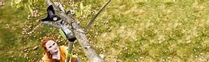 Immergrüne Sträucher Und Bäume : str ucher und b ume schneiden videoanleitung von hornbach ~ Michelbontemps.com Haus und Dekorationen