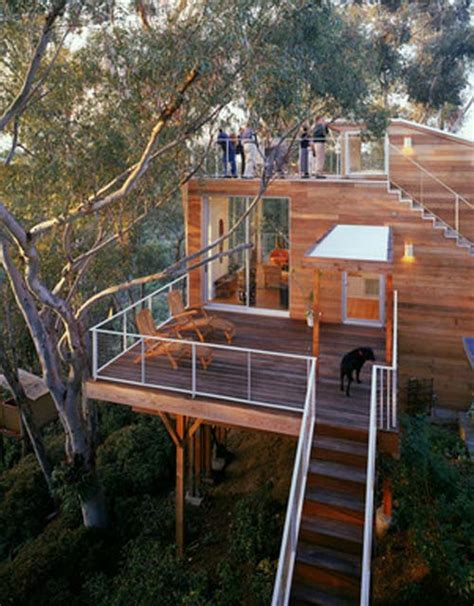treehouse furniture ideas tree house design luxury wooden house design by safdie rabines architects 1 interior design