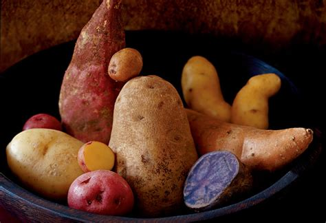 different types of potatoes recipes best potato recipes ever potato dishes