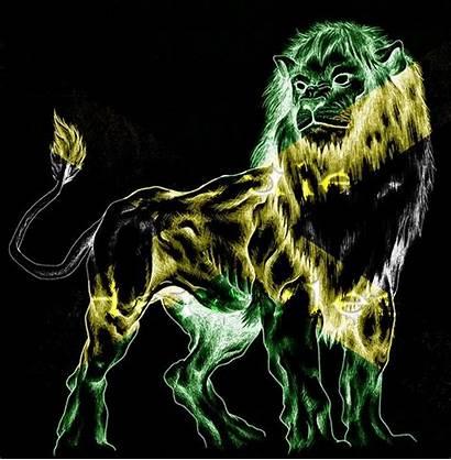 Rasta Lion Reggae Cool Wallpapers Jamaica Marley