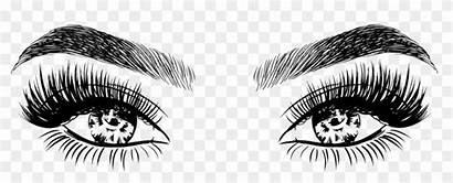 Lashes Eyelashes Eyebrow Drawings Transparent Makeup Pngfind
