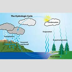 Pin By Holly On Things  Water Cycle Diagram, Water Cycle For Kids, Simple Water Cycle