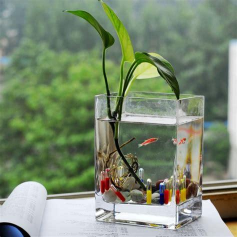 plante verte pour chambre lе vase en verre un joli dé de la déco