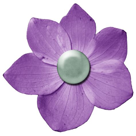 dark purple flower png   icons  png backgrounds