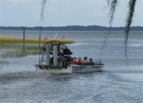 Airboat Adventures At Boggy Creek by Baby Gaitors Picture Of Boggy Creek Airboat Rides