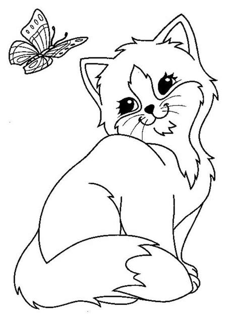 cat  butterfly coloring page  printable coloring pages  kids
