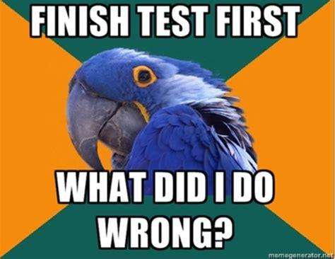 Paranoid Parrot Meme - image 133549 paranoid parrot know your meme