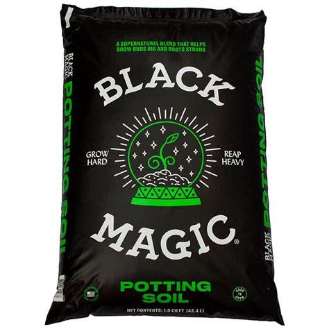 home depot area rugs sale black magic 1 5 cu ft potting soil 1010172403 the home