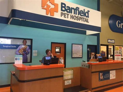 Banfield Pet Hospital® Location At 278 New Game Art Vacatures Clip Pictures Of Kid Fence History Conservation Vaporwave Blogs Student Uk Xian Academy Colleges Programs Canvas