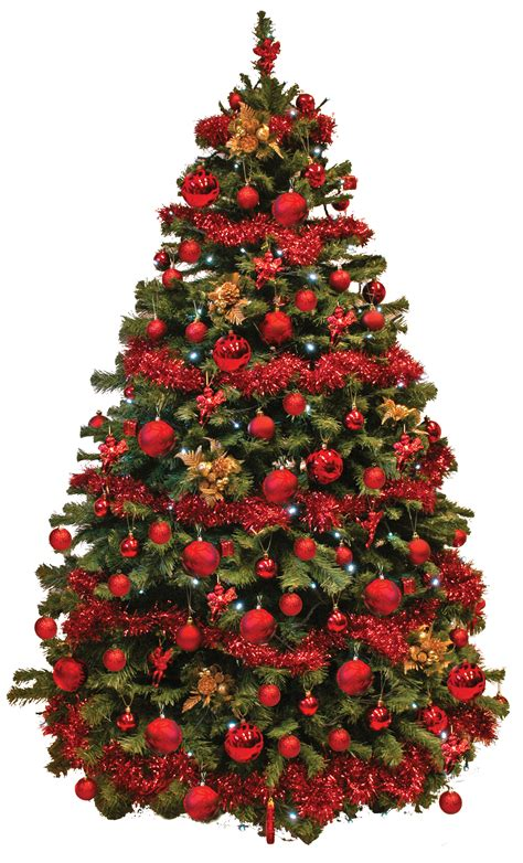 picture of real christmas trees decorated don t forget your office tree 171 shipshape cleaning news high wycombe bucks uk
