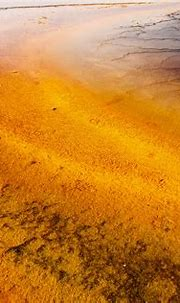 Tiger Eye_27A0556 | Abstracting at the Grand Prismatic ...