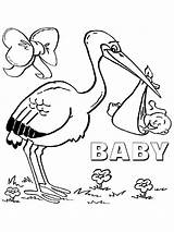 Coloring Storks Stork Cardinal Printable Pets Secret Bird Ecoloringpage Chickadee Birds Getdrawings Getcolorings Popular sketch template