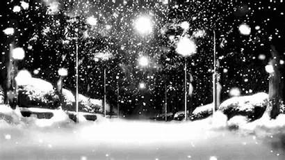Snow Winter Night Snowing Christmas