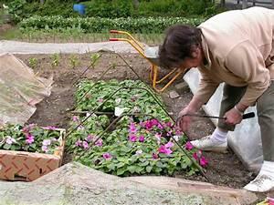 Garten Blumen Pflanzen : blumen pflanzen ~ Markanthonyermac.com Haus und Dekorationen