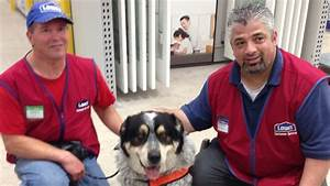 Lowes hires man and his service dog cnn for Lowes hires service dog