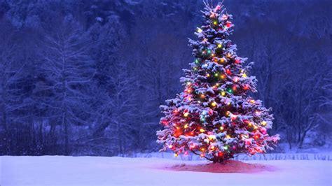 Free Animated Tree Wallpaper - animated tree новогодняя елка