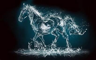 Water Horse 3d Horses Wallpapers Desktop Dna