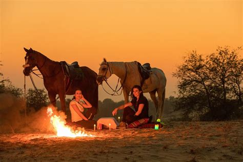 hiking dubai riding horse service updated profile posts