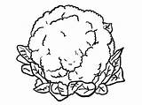 Cauliflower Coloring Pages Drawing Clipart Colouring Vegetables Printable Veggies 123clipartpng Food Print Flowers Fruits Visit Picolour sketch template